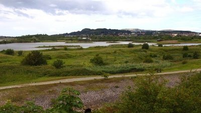 Conwy Nature Reserve  (© © Copyright Steve Daniels (https://www.geograph.org.uk/profile/35305) and licensed for reuse (http://www.geograph.org.uk/reuse.php?id=2142383) under this Creative Commons Licence (https://creativecommons.org/licenses/by-sa/2.0/).)