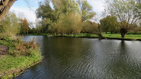 The Cam at Newnham  (© © Copyright John Sutton (https://www.geograph.org.uk/profile/38492) and licensed for reuse (https://www.geograph.org.uk/reuse.php?id=5601861) under this Creative Commons Licence (https://creativecommons.org/licenses/by-sa/2.0/).)