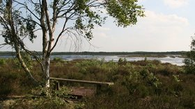 Humberhead Peatlands National Nature Reserve- seat overlooking the old peat workings  (© © Copyright Chris (https://www.geograph.org.uk/profile/79357) and licensed for reuse (http://www.geograph.org.uk/reuse.php?id=3984266) under this Creative Commons Licence (https://creativecommons.org/licenses/by-sa/2.0/).)