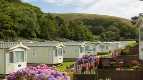 Bovisand Lodge Holiday Park holiday in Devon today - Bovisand's tranquil wooded valley