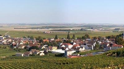 Avize_Marne_France_panorama