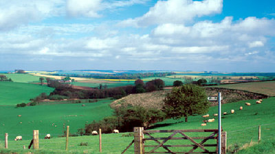 Picture of Holivans, Lincolnshire