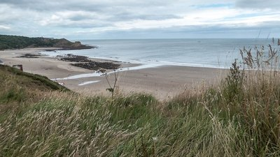 Cayton Bay, Yorkshire  (© © Copyright Christine Matthews  (https://www.geograph.org.uk/profile/1777) and licensed for reuse (http://www.geograph.org.uk/reuse.php?id=4601724) under this Creative Commons Licence (https://creativecommons.org/licenses/by-sa/2.0/).)
