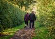 Walking to Glastonbury Tor