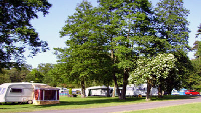 Picture of Morn Hill Caravan Club Site, Hampshire, South East England