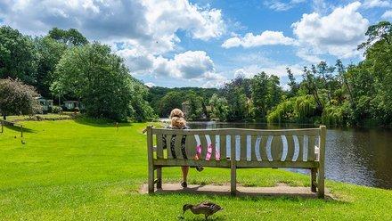 Holiday homes Knaresborough - Lido Holiday Home Park