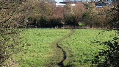Smestow Valley Nature Reserve, Wolverhampton (© Roger  Kidd / Smestow Valley Nature Reserve, Wolverhampton (original photo: https://commons.wikimedia.org/wiki/File:Smestow_Valley_Nature_Reserve,_Wolverhampton_-_geograph.org.uk_-_623305.jpg))