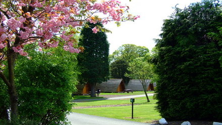 Wigwam through the Cherry Trees - Peaceful, lush surroundings to enhance your holiday experience