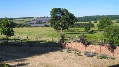 Wonderful area surrounding the site