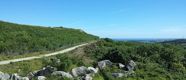 Walking Trails: A Guide to the National Trails in South-West England - South West England