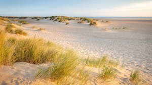 things to do in Norfolk - beach near wells next the sea