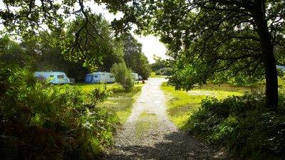 Holmsley Caravan & Camping Site