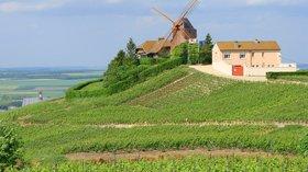 Verzenay moulin (© By Vassil (Own work) [Public domain], via Wikimedia Commons)