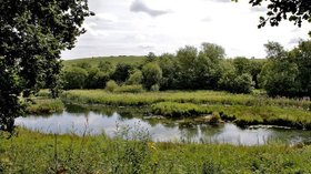 Carlton Marsh  (© © Copyright Tom Curtis (https://www.geograph.org.uk/profile/125370) and licensed for reuse (https://www.geograph.org.uk/reuse.php?id=5496025) under this Creative Commons Licence (https://creativecommons.org/licenses/by-sa/2.0/).)