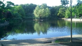 Ward Jackson Park Pond (© © Copyright Richard Atkinson (https://www.geograph.org.uk/profile/1111) and licensed for reuse (http://www.geograph.org.uk/reuse.php?id=24794) under this Creative Commons Licence (https://creativecommons.org/licenses/by-sa/2.0/).)