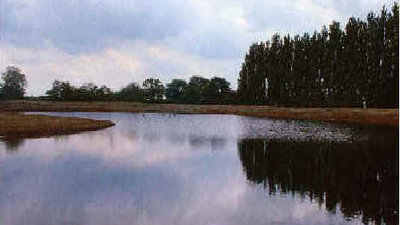 Picture of Little Ranch, Cambridgeshire