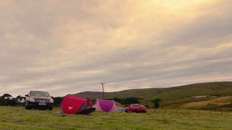 Hafod Hall Camping - Lovely open fields with plenty of space to pitch (© Hafod Hall)