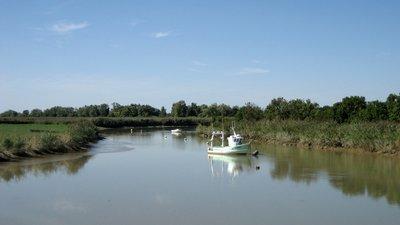 In the region: between Loire river and Canal de la Martinière, near Paimbœuf, département de la Loire-Atlantique - panoramic view (© Maarten Sepp [CC BY-SA 3.0 (http://creativecommons.org/licenses/by-sa/3.0)], via Wikimedia Commons (original photo: https://commons.wikimedia.org/wiki/File:Between_Loire_river_and_Canal_de_la_Martini%C3%A8re,_near_Paimb%C5%93uf,_d%C3%A9partement_de_la_Loire-Atlantique,_France._-_panoramio.jpg))