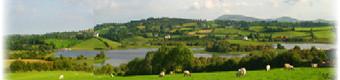 Picture of Lakeside View Caravan Park, Down - Landscape surrounding the site