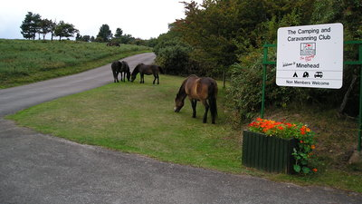 Picture of Minehead Camping and Caravanning Club Site, Somerset