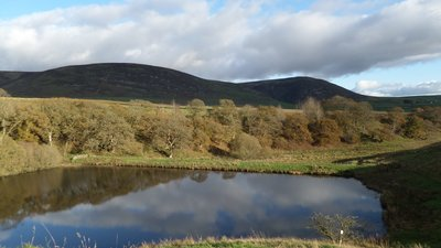 Morton_Loch_dam,_Thornhill,_Dumfries_and_Galloway,_Scotland_-_view_from_the_castle