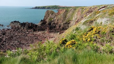 The Pembrokeshire Coast Path near Little Castle Head  (© © Copyright Dave Kelly (https://www.geograph.org.uk/profile/84364) and licensed for reuse (https://www.geograph.org.uk/reuse.php?id=5426905) under this Creative Commons Licence (https://creativecommons.org/licenses/by-sa/2.0/).)