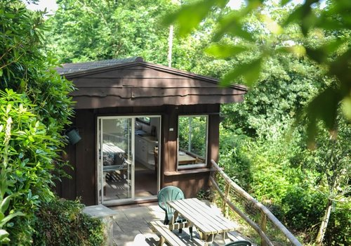 Photo of Lodge: Chestnut Gold Lodge, 2 Bedroom, Pet Friendly