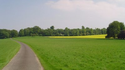Charborough Park, near Wimborne Dorset (© © Copyright John Hope (http://www.geograph.org.uk/profile/4448) and licensed for reuse (http://www.geograph.org.uk/reuse.php?id=103426) under this Creative Commons Licence (https://creativecommons.org/licenses/by-sa/2.0/))