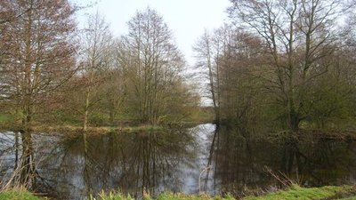 Pond - outskirts of Sutton on the Forest  (© © Copyright DS Pugh (https://www.geograph.org.uk/profile/1469) and licensed for reuse (http://www.geograph.org.uk/reuse.php?id=380861) under this Creative Commons Licence (https://creativecommons.org/licenses/by-sa/2.0/).)