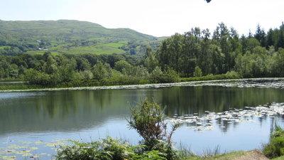 Llyn Tecwyn Isaf - just a short walk through the woods from Barcdy (© own)