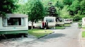 Picture of Beech Grove Caravan and Camping Park, Kerry