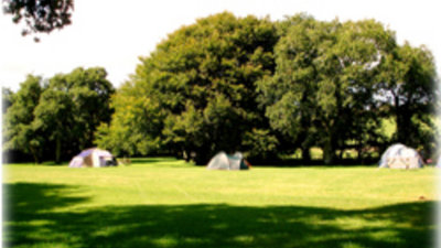 Green area on Brandy Brook Caravan & Camping Park, Pembrokeshire, Wales