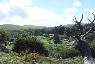 Bronze stag overlooking local area