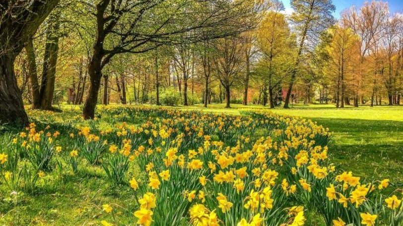 East Sussex holidays - Horam Manor Country Park
