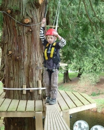 Try the high ropes at River Dart Country Park campsite in Devon