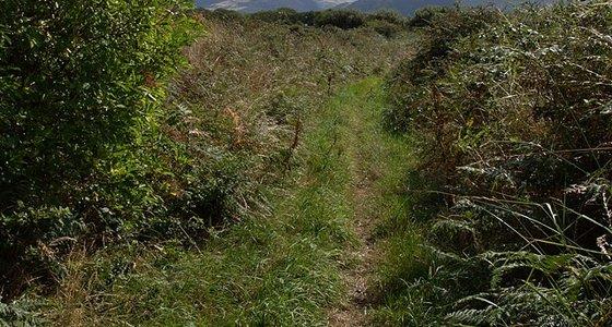 Ballamoar Campsite Ballaugh Isle Of Man