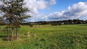 Hardwick East Park near the caravan park (© © Copyright Andrew Curtis (https://www.geograph.org.uk/profile/32242) and licensed for reuse (http://www.geograph.org.uk/reuse.php?id=2640020) under this Creative Commons Licence (https://creativecommons.org/licenses/by-sa/2.0/).)