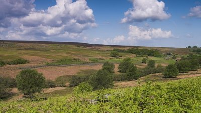 North York Moors  (© © Copyright dennis smith (https://www.geograph.org.uk/profile/21325) and licensed for reuse (https://www.geograph.org.uk/reuse.php?id=659785) under this Creative Commons Licence (https://creativecommons.org/licenses/by-sa/2.0/).)