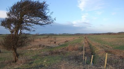 Farm land with Preston Blackpool Railway (© Keith Wright [CC BY-SA 2.0  (https://creativecommons.org/licenses/by-sa/2.0)], via Wikimedia Commons (original photo: https://commons.wikimedia.org/wiki/File:Farm_land_with_Preston_Blackpool_Railway_-_geograph.org.uk_-_106842.jpg))