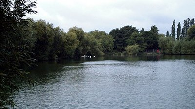 Fishing Lake, Rochford  (© © Copyright John Myers (https://www.geograph.org.uk/profile/5733) and licensed for reuse (http://www.geograph.org.uk/reuse.php?id=332512) under this Creative Commons Licence (https://creativecommons.org/licenses/by-sa/2.0/).)