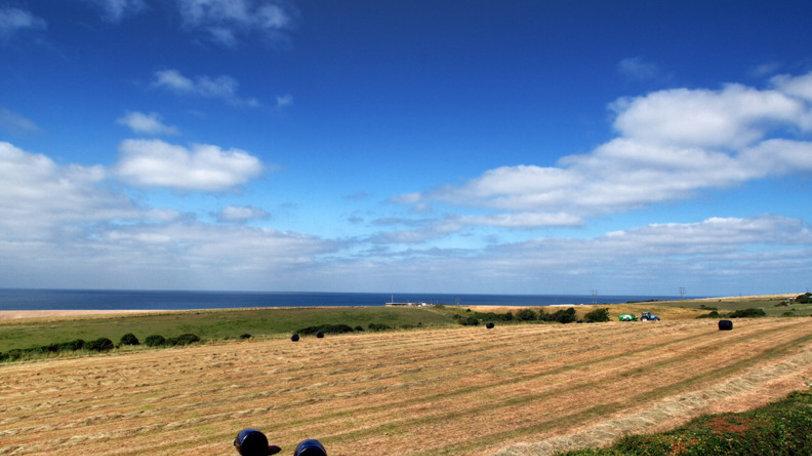 Landscape near Pebble Bank Caravan Park