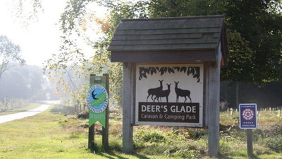 Welcome to Deer's Glade