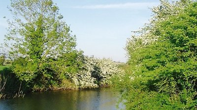 Pevensey Haven in May, East Sussex  (© © Copyright nick macneill (https://www.geograph.org.uk/profile/37997) and licensed for reuse (https://www.geograph.org.uk/reuse.php?id=1476910) under this Creative Commons Licence (https://creativecommons.org/licenses/by-sa/2.0/).)