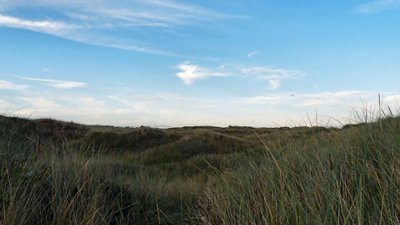 Lytham St Annes Local Nature Reserve  (© © Copyright Gerald England (https://www.geograph.org.uk/profile/22742) and licensed for reuse (https://www.geograph.org.uk/reuse.php?id=3280806) under this Creative Commons Licence (https://creativecommons.org/licenses/by-sa/2.0/).)