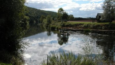 The River Wye at How Caple  (© © Copyright Philip Halling (https://www.geograph.org.uk/profile/1837) and licensed for reuse (http://www.geograph.org.uk/reuse.php?id=55547) under this Creative Commons Licence (https://creativecommons.org/licenses/by-sa/2.0/).)