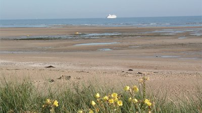Low tide at Merville-Franceville-Plage (© By Sword0644 (Photo taken by Sword0644) [CC BY-SA 2.0 (http://creativecommons.org/licenses/by-sa/2.0), GFDL (http://www.gnu.org/copyleft/fdl.html), GFDL (http://www.gnu.org/copyleft/fdl.html), CC-BY-SA-3.0 (http://creativecommons.org/licenses/by-sa/3.0/) or CC BY-SA 2.5-2.0-1.0 (http://creativecommons.org/licenses/by-sa/2.5-2.0-1.0)], via Wikimedia Commons (GFDL copy: https://en.wikipedia.org/wiki/GNU_Free_Documentation_License, original photo: https://commons.wikimedia.org/wiki/File:Low_tide_at_Merville-Franceville-Plage.jpg))
