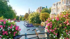 holiday in Amsterdam - Amsterdam