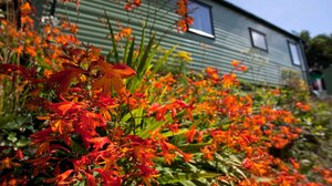 Holidays in Redruth Cornwall - Tehidy Holiday Park