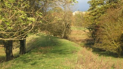 The course of the (former) Hexham to Allendale railway  (© © Copyright Mike Quinn (https://www.geograph.org.uk/profile/12735) and licensed for reuse (http://www.geograph.org.uk/reuse.php?id=601669) under this Creative Commons Licence (https://creativecommons.org/licenses/by-sa/2.0/).)