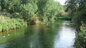 Hallcroft Fishery And Caravan Park, fishing holidays - Enjoy fishing along the scenic River Idel